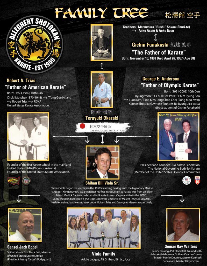 bill viola karate lineage